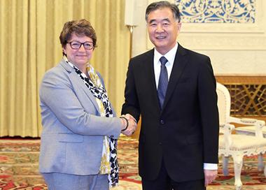 汪洋会见法国国民议会第一副议长