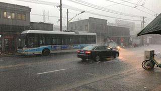 """台风""""温比亚""""过境"""