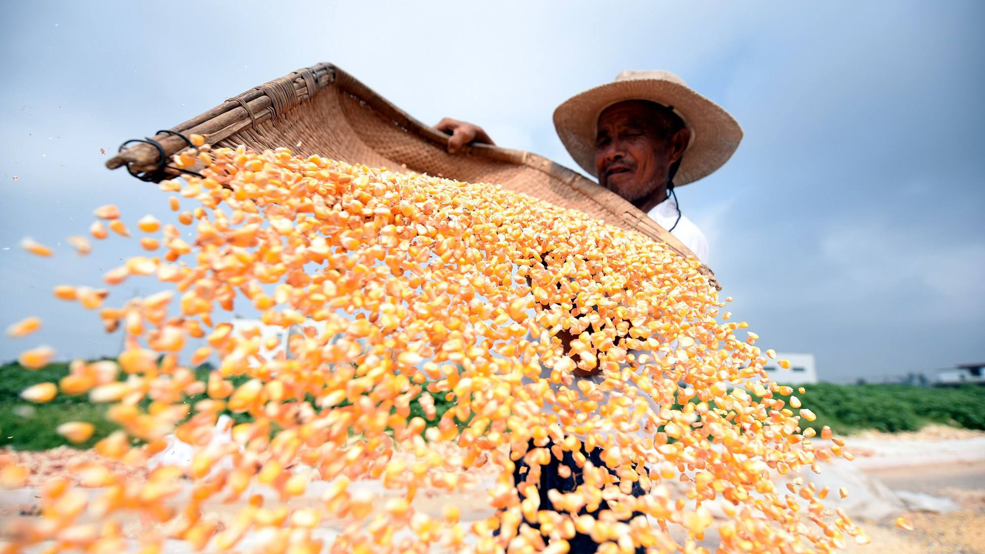 各地农民喜获丰收