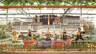 超两千种蔬菜亮相菜博会
