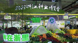 2021浙江种业博览会开展