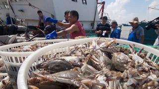 浙江:休渔结束千帆竞发